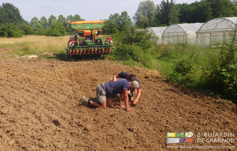 Cliquer sur la photo pour voir la reprise de sol après drainage