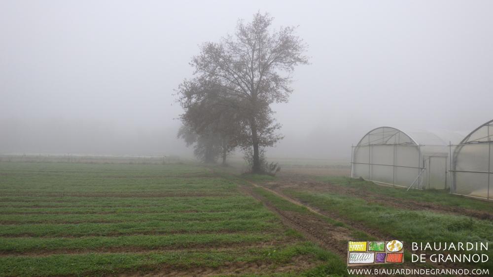 Notre Bresse et ses brouillards lumineux, chantés par Claudel et Vacheré