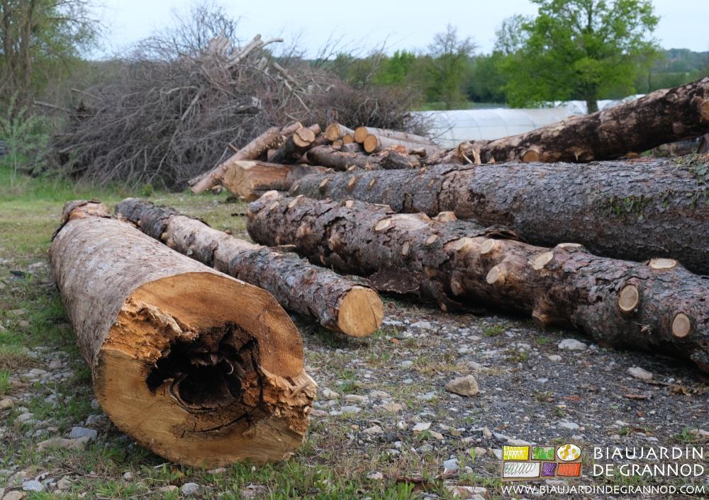Récup de bois pour déchiquetage.
