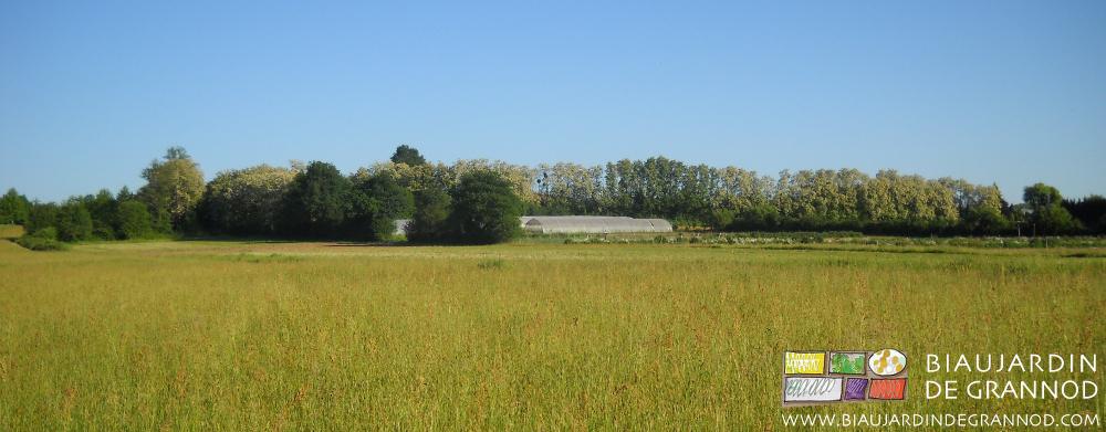 Un milieu rural préservé, diversifié et peu construit : la chance du paysan qui travaille à la campagne, loin de la ville (et / mais aussi des consommateurs).
