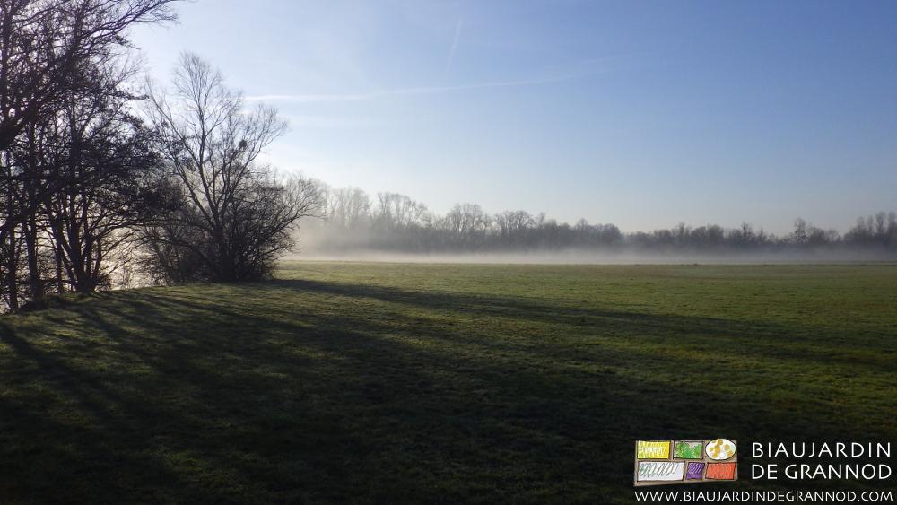 """""""La brume du matin n'arrête pas le pèlerin""""..."""