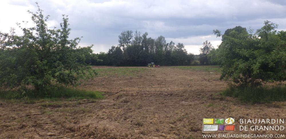Le déchaumeur à disques permet de détruire et incorporer au sol les repousses de l'ancienne prairie permanente.