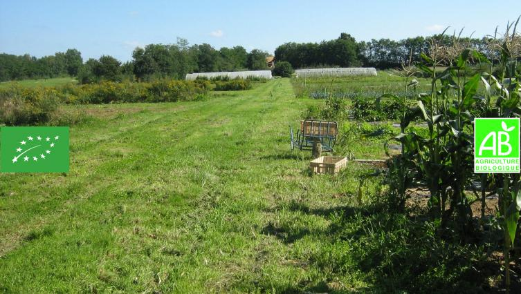 Un jardin 100% Bio 100% en paniers