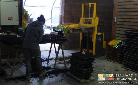 Remplissage des plaques alvéolées pour la fabrication de mottes.
