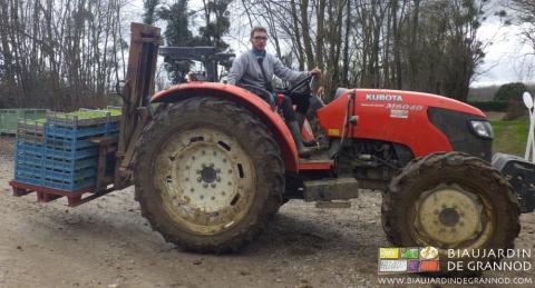 Transport des plants avec la fourche à palette du tracteur