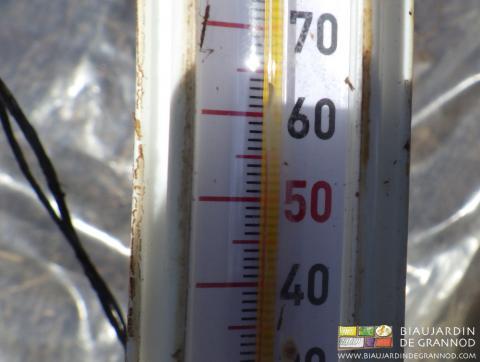 En quatre jours, la température du tas atteint 55°