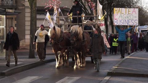 Manifestation de soutien dans les rues de Dijon en direction du tribunal