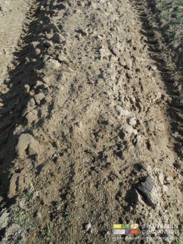 chaulage de nos terres acides de Bresse